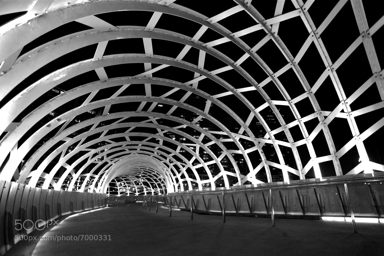 Photograph the bridge by Yoel Cupu on 500px