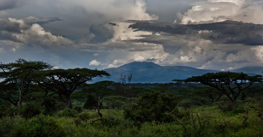Tanzanian landscape