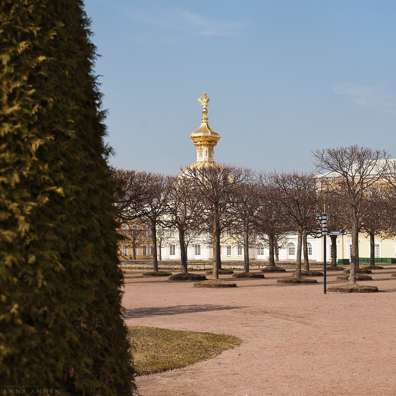 Photograph Peterhof by Anna Anhen on 500px