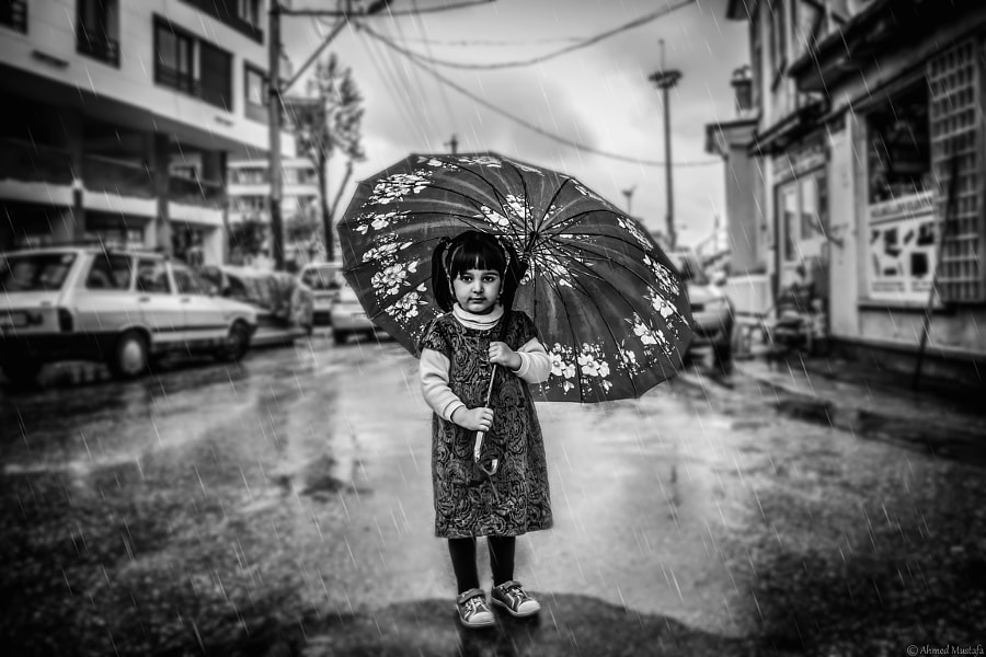 Under the Rain by Ahmed  Mustafa on 500px