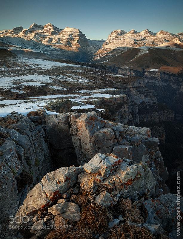 Photograph About the soft light by Gorka Lopez on 500px