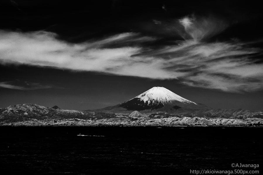 Fuji(IR)