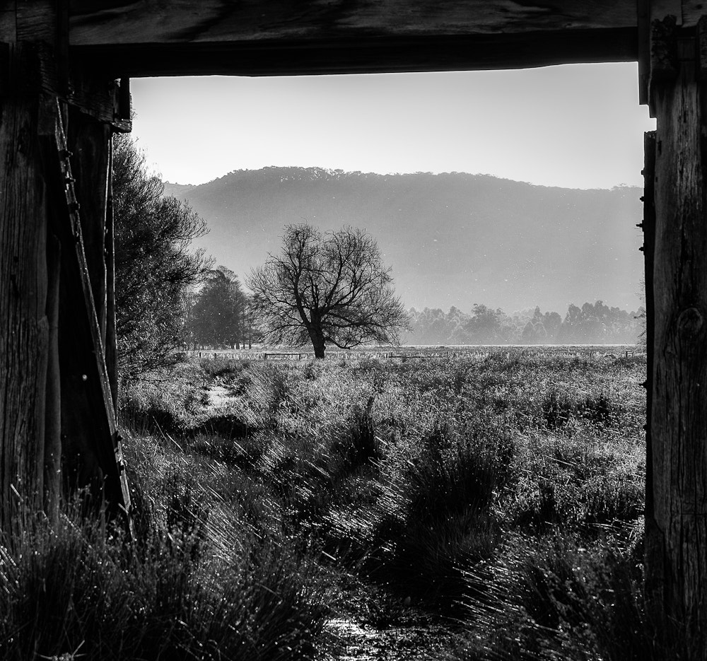 Photograph View Through the Old Railway Bridge by Margaret Netherwood on 500px