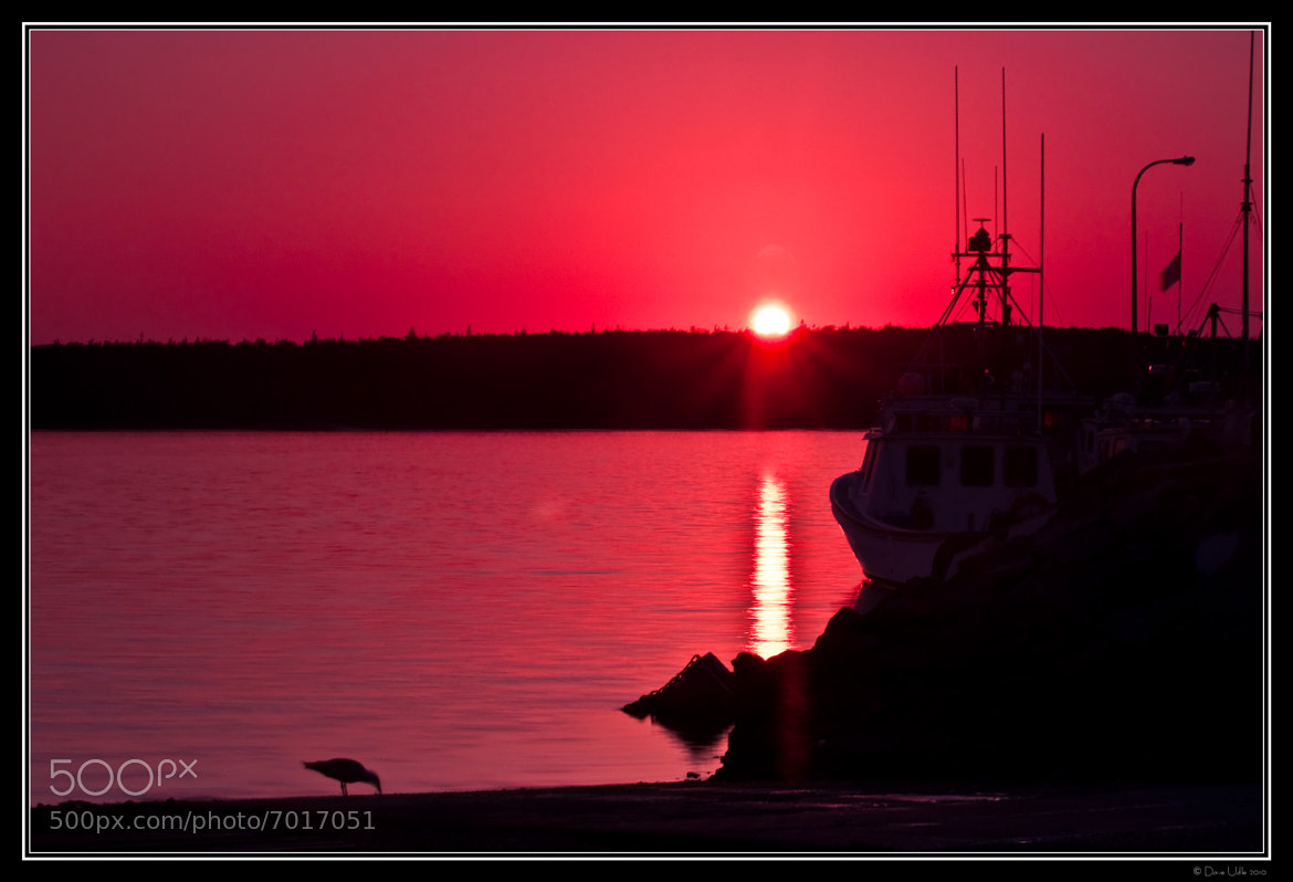 Photograph Nova Scotia Sunset by Dave Udle on 500px