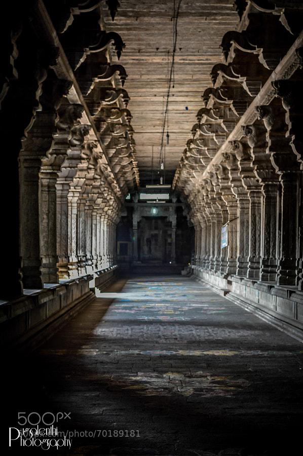 Ekambareswarar Temple Pathway