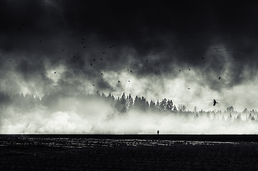 Still Standing... by Mikko Lagerstedt on 500px.com