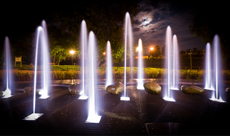 Photograph Fountain At Night by Alessio Furlan on 500px