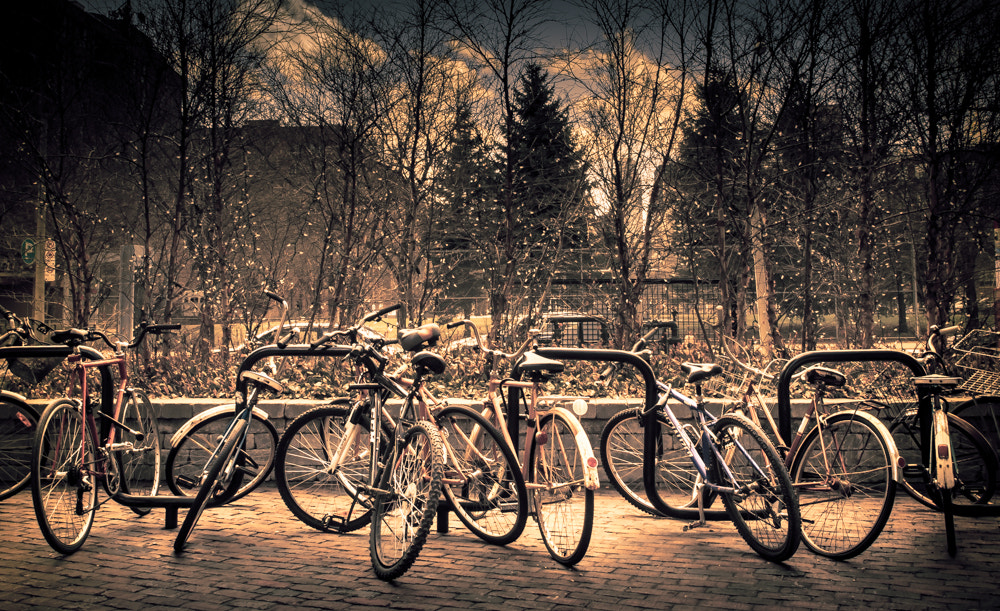 Photograph Bikes like that by Elena Anders on 500px
