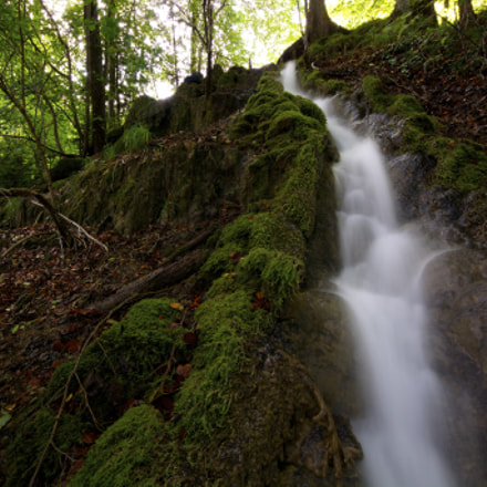 Toffen, Switzerland | Small Brook in the forest