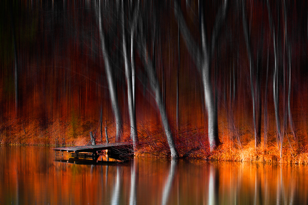 Photograph Warm reflections by Marco Carmassi on 500px