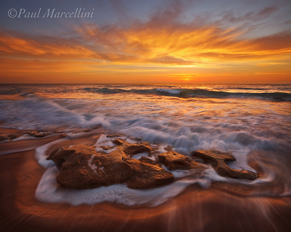 Photograph Washington Oaks Ablaze by Paul Marcellini on 500px