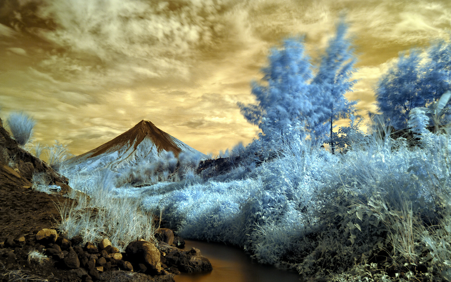Photograph Gold & Blue by Dacel Andes on 500px