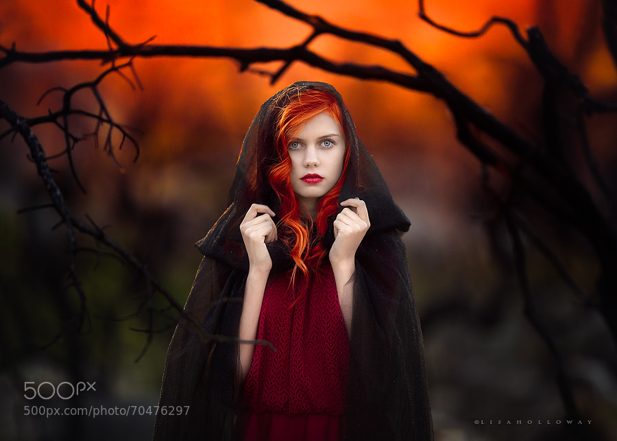 Natural light Photography -  Photograph Fiery by Lisa Holloway on 500px