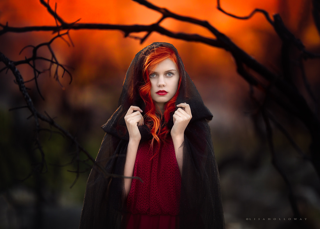 Photograph Fiery by Lisa Holloway on 500px