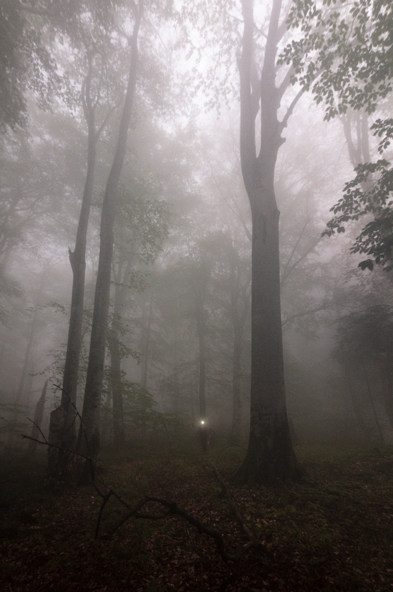 Photograph Dark foggy day by Anton Malkov on 500px