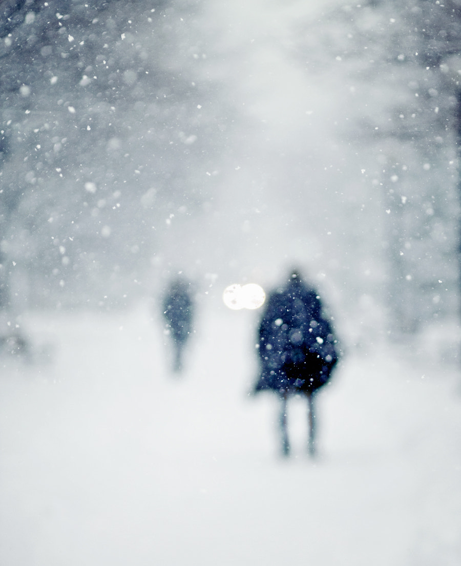 Photograph Snow, Less Focus by Miles Storey on 500px