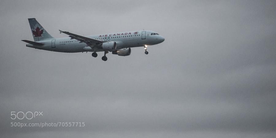 Air Canada flight preparing to land at Pearson.