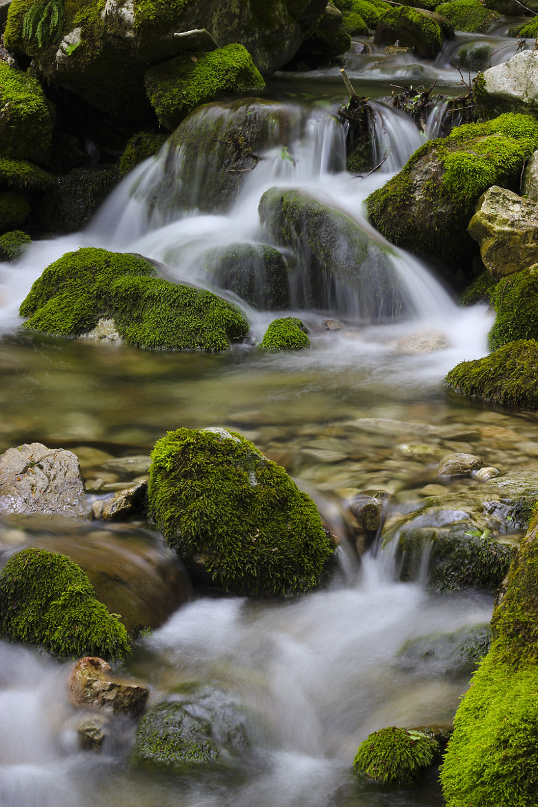 Photograph stream by Gregor K on 500px