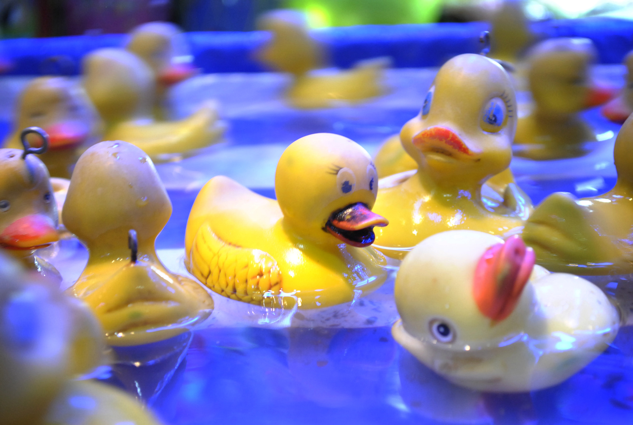 Photograph Fun Ducky by Damian Lestrade on 500px