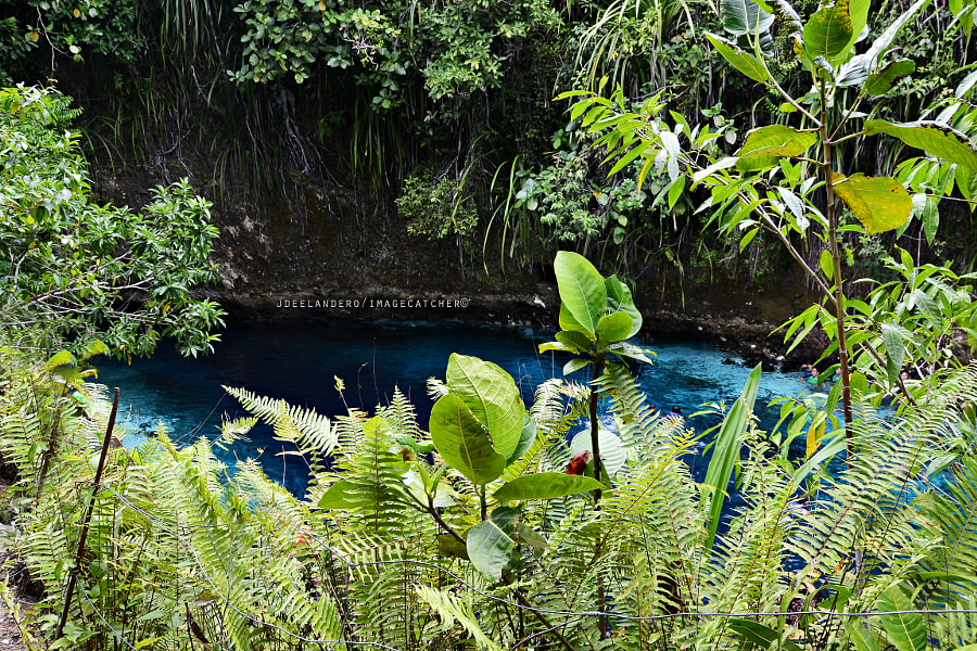 Enchanted River by JDee Landero on 500px.com
