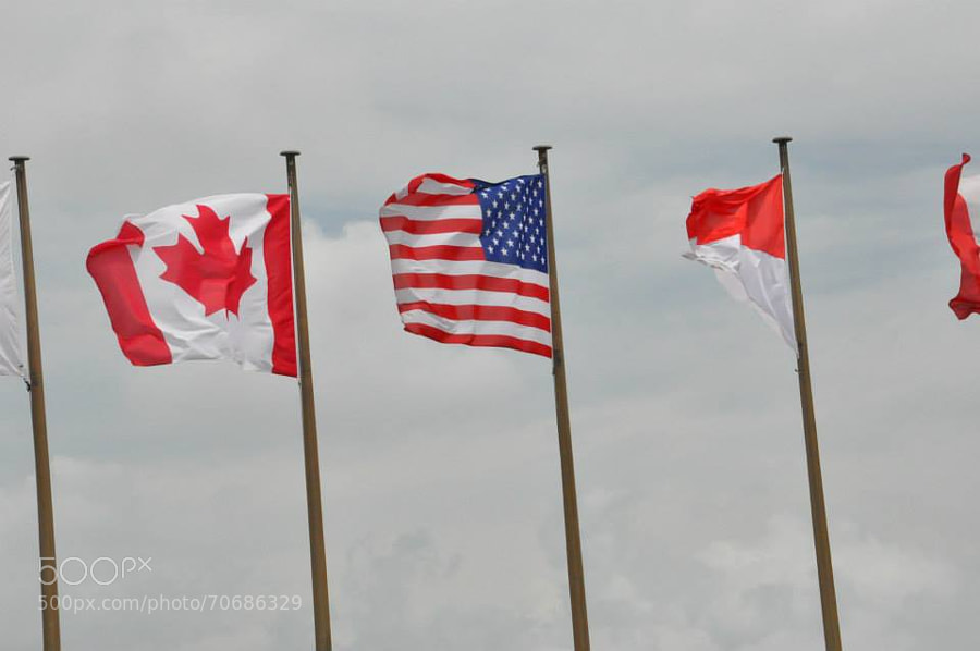 Flags by NicoleFavero
