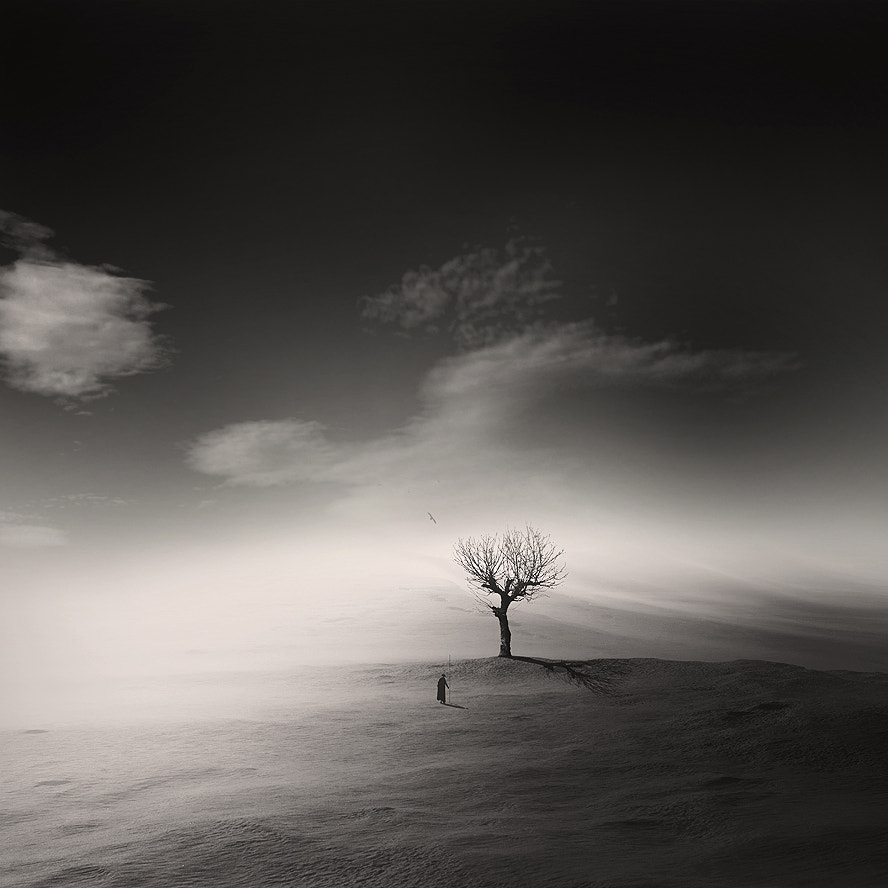 Photograph Solitude by George Christakis on 500px