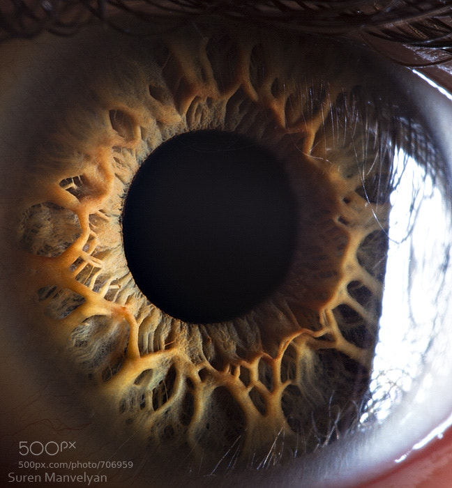 Photograph Your beautiful eyes by Suren Manvelyan on 500px