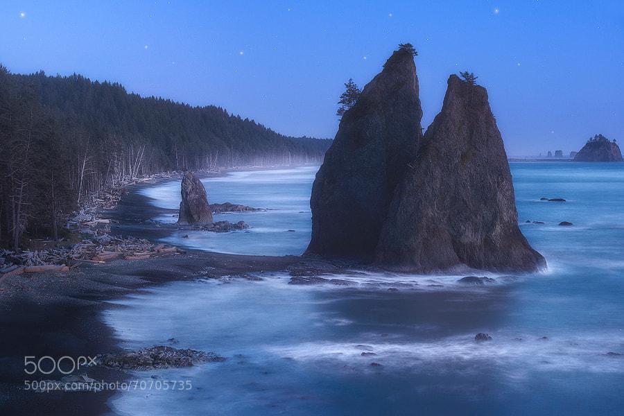 Photograph The Wild Coast - Olympic Peninsula, Washington by Dave Morrow on 500px