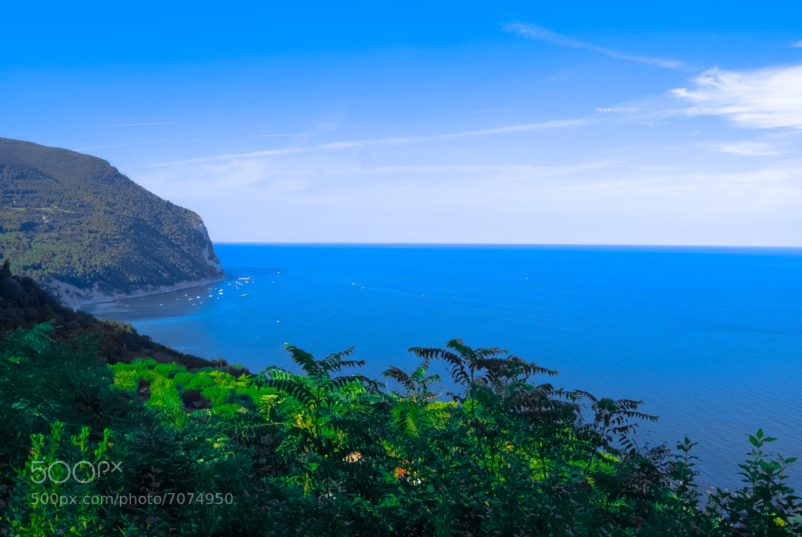 Photograph Blue & Green by Alberto Comi on 500px
