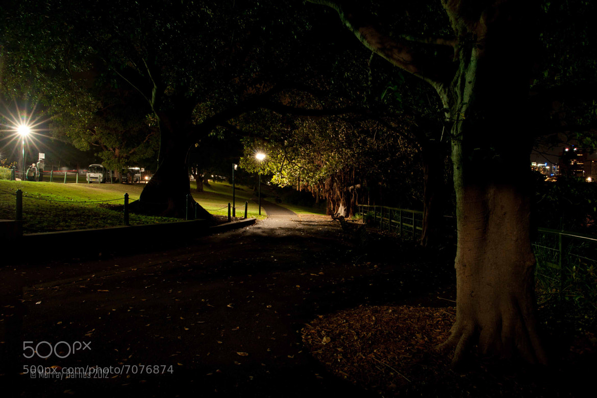 Photograph Lady Macquarie's Chair by Murray Barnes on 500px