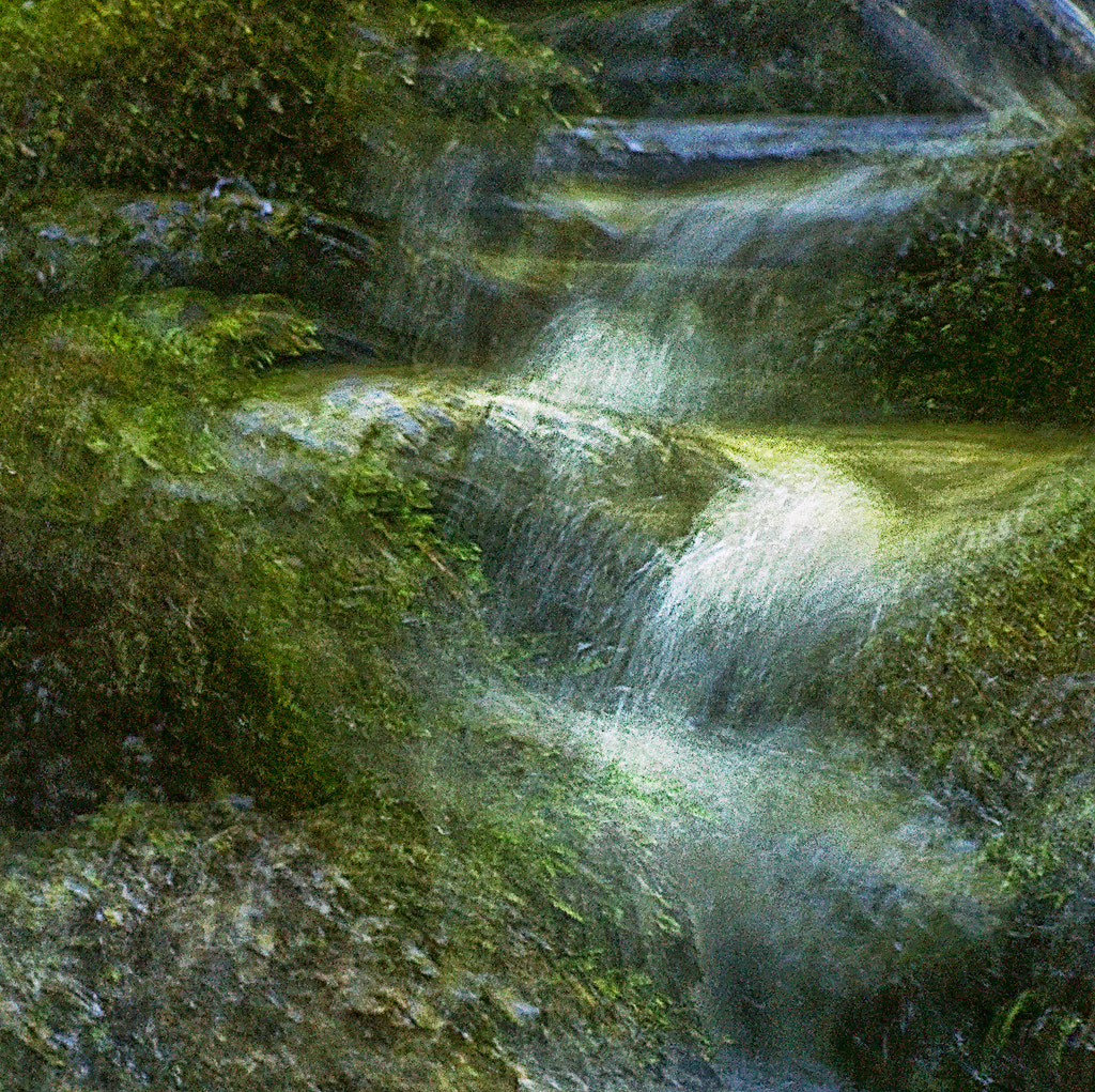 Photograph Stream of life by petersamuelsson.se  on 500px