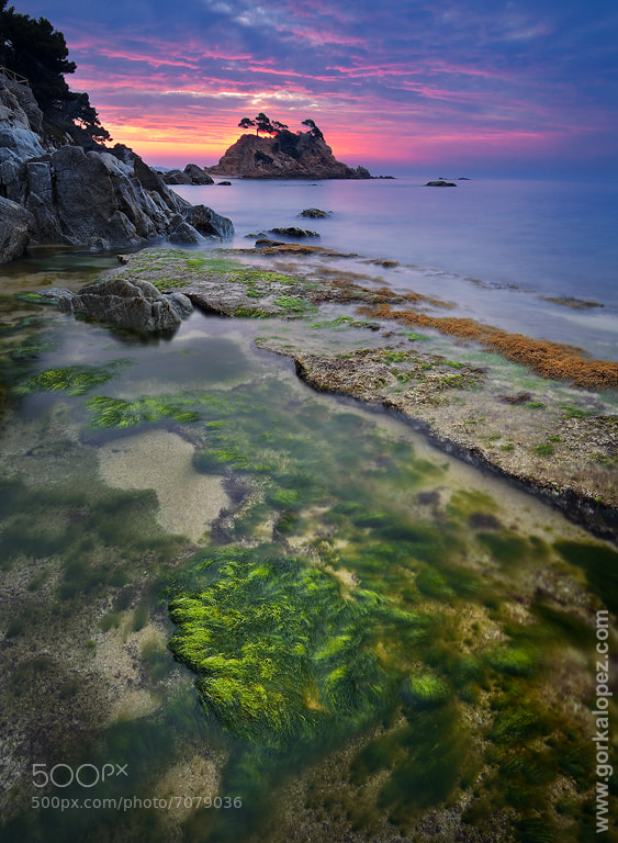 Photograph Costa Brava cromatic by Gorka Lopez on 500px