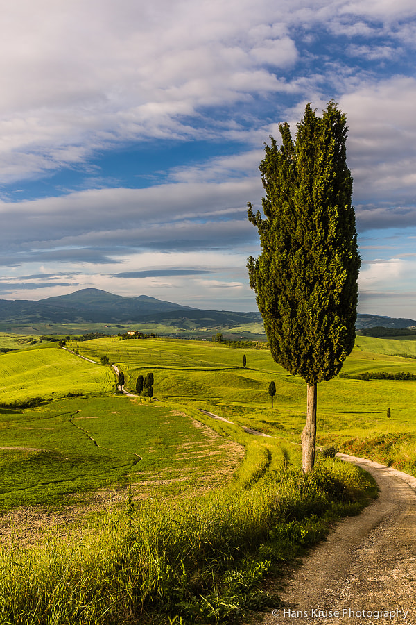 This photo was shot the last morning of the Tuscany May 2014 photo workshop. There were 10 participants from South Africa, USA, France, UK, Switzerland, Belgium and Denmark.