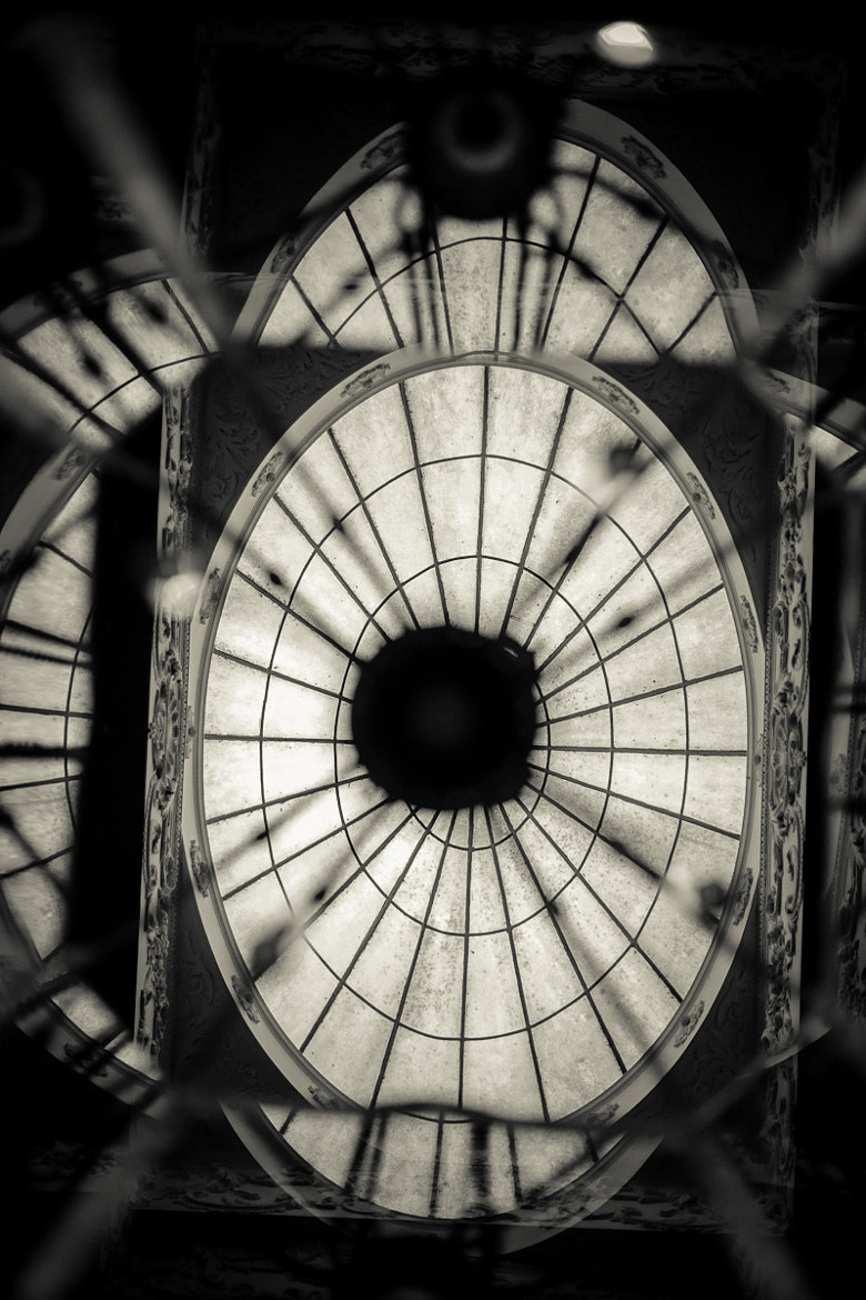 Photograph Look Up by Nat Parnell on 500px