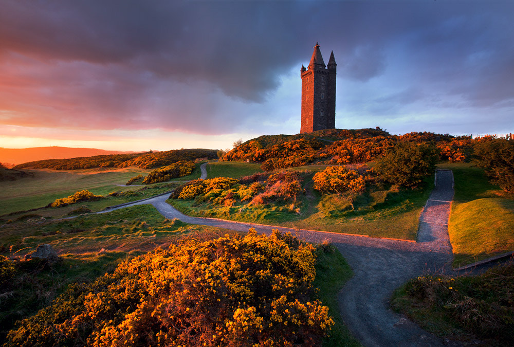 Photograph Scrabo Evening by Stephen Emerson on 500px