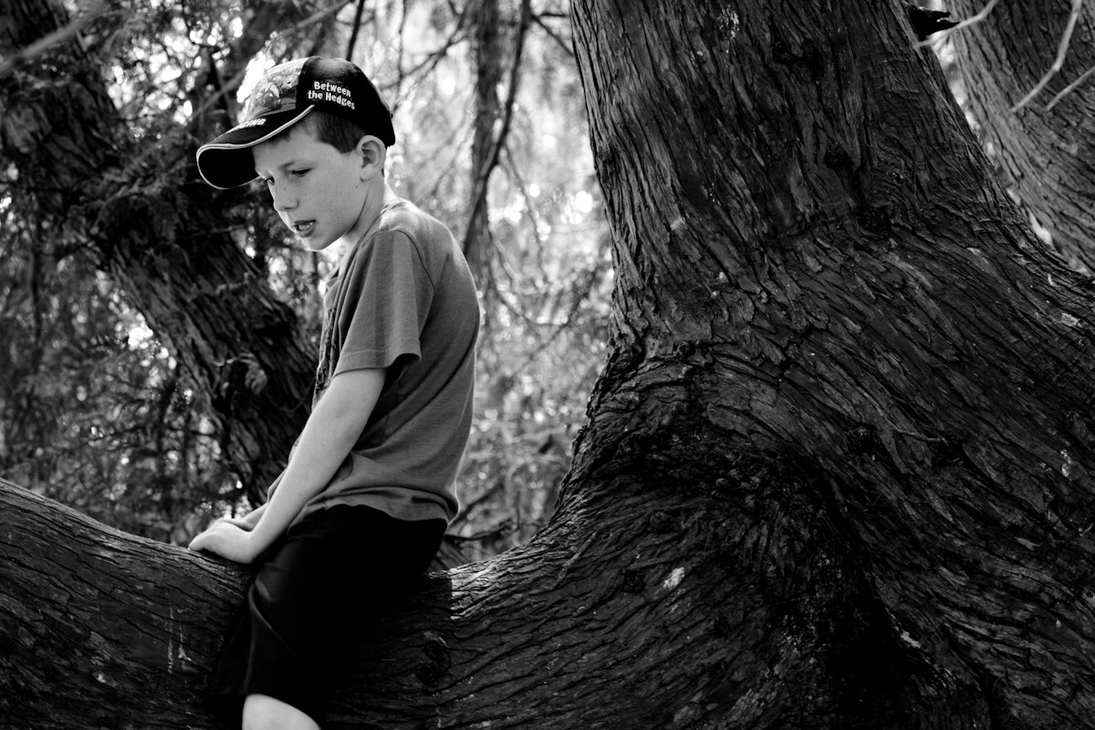 Photograph Trees and boys by Natalie S on 500px