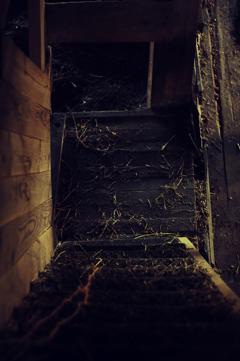Photograph Down > Stairs by Brian  Willoughby on 500px