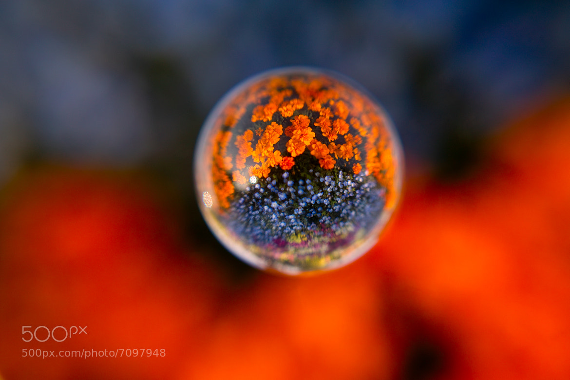 Photograph Air  Ball  by Shijyurou T on 500px