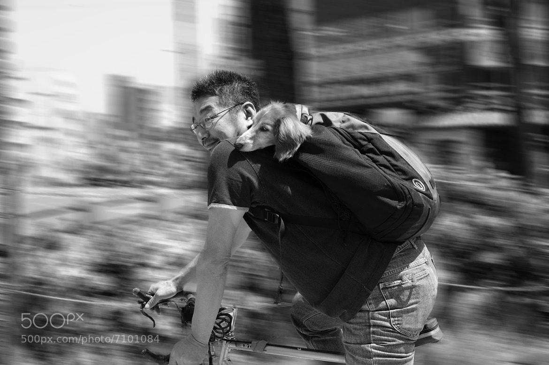 Photograph Cycling by Mitsuru Moriguchi on 500px