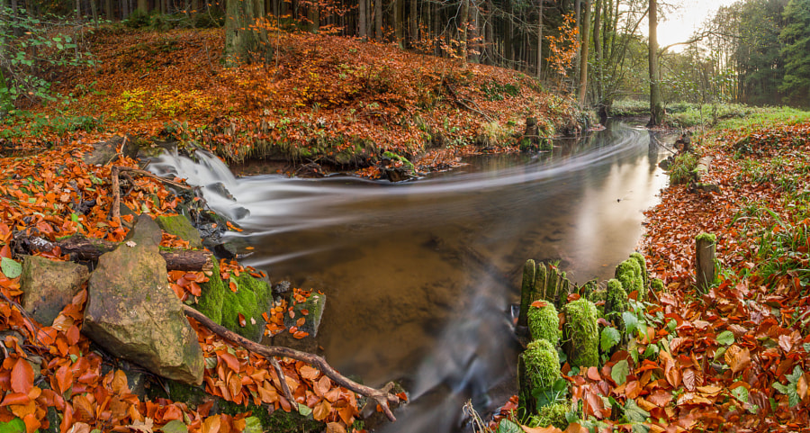 Autumn Flow by Jan Stria on 500px.com