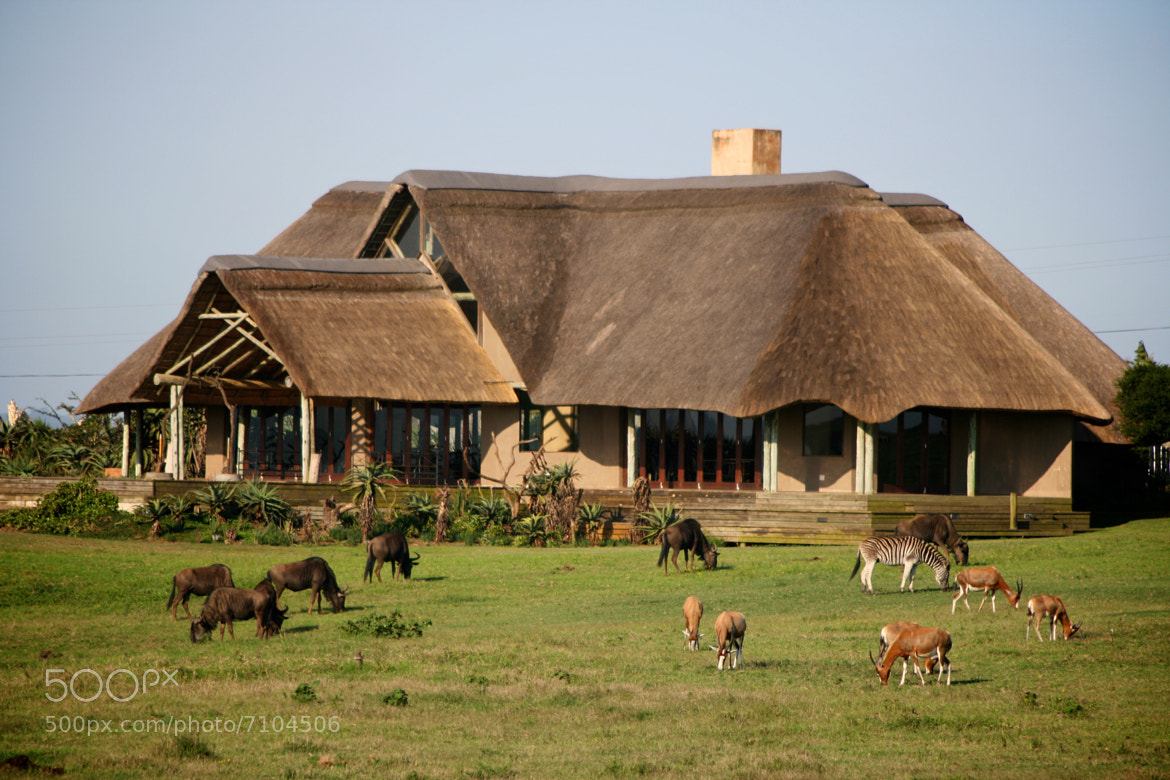 Photograph The Wildlife Lodge by David Doig on 500px