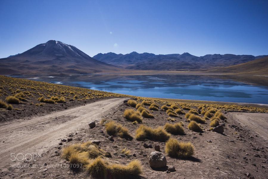 The beautiful turquoise lagoon Miscanti and Volcano Miscanti. Atacama Desert - Chile
