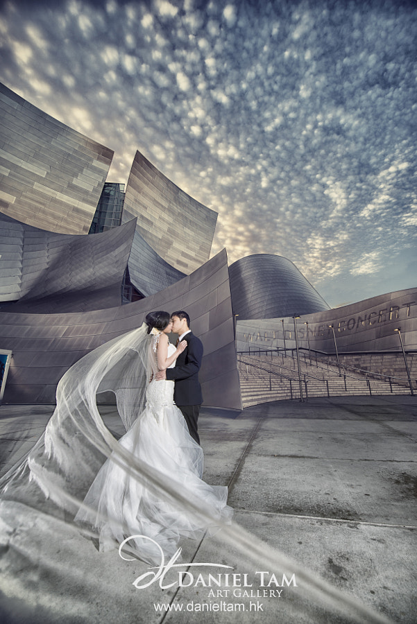 Photograph LA Prewedding by Daniel Tam on 500px