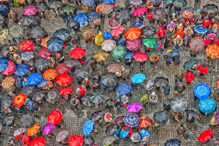 Photograph Only happy When It Rains by Rory McDonald on 500px