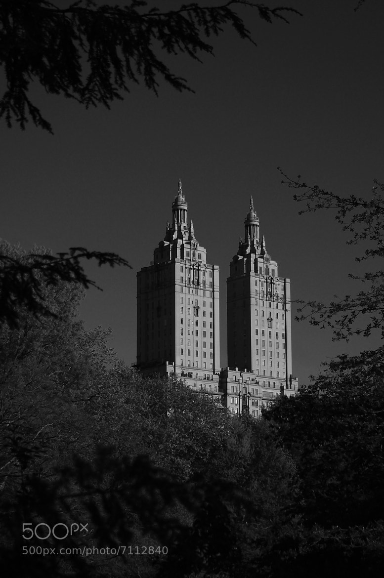 Photograph The San Remo from Central Park by Jay B. Wilson on 500px