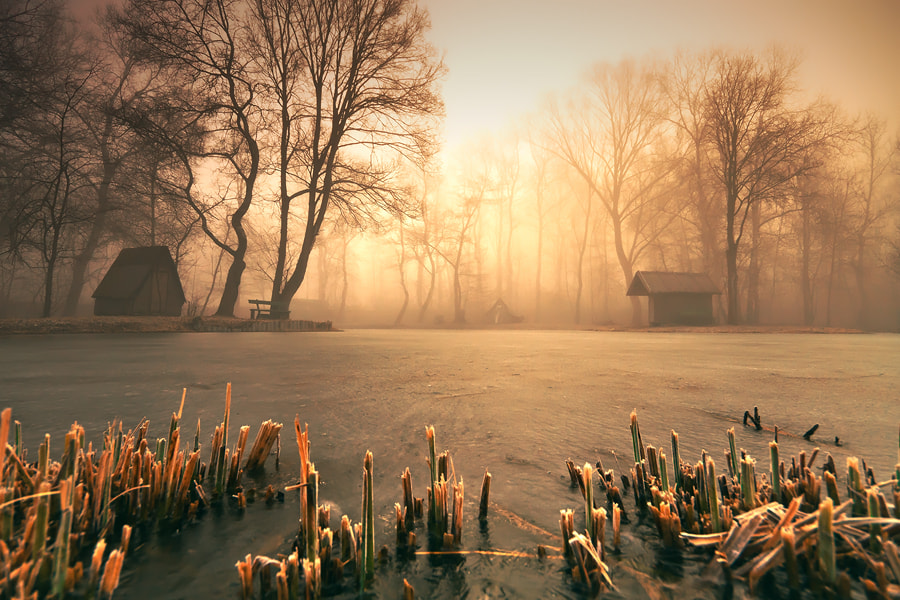 Photograph silent hill by Adam Dobrovits on 500px