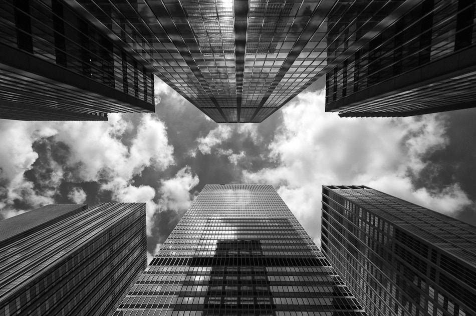 Photograph Looking up by Martin Gunnarson on 500px