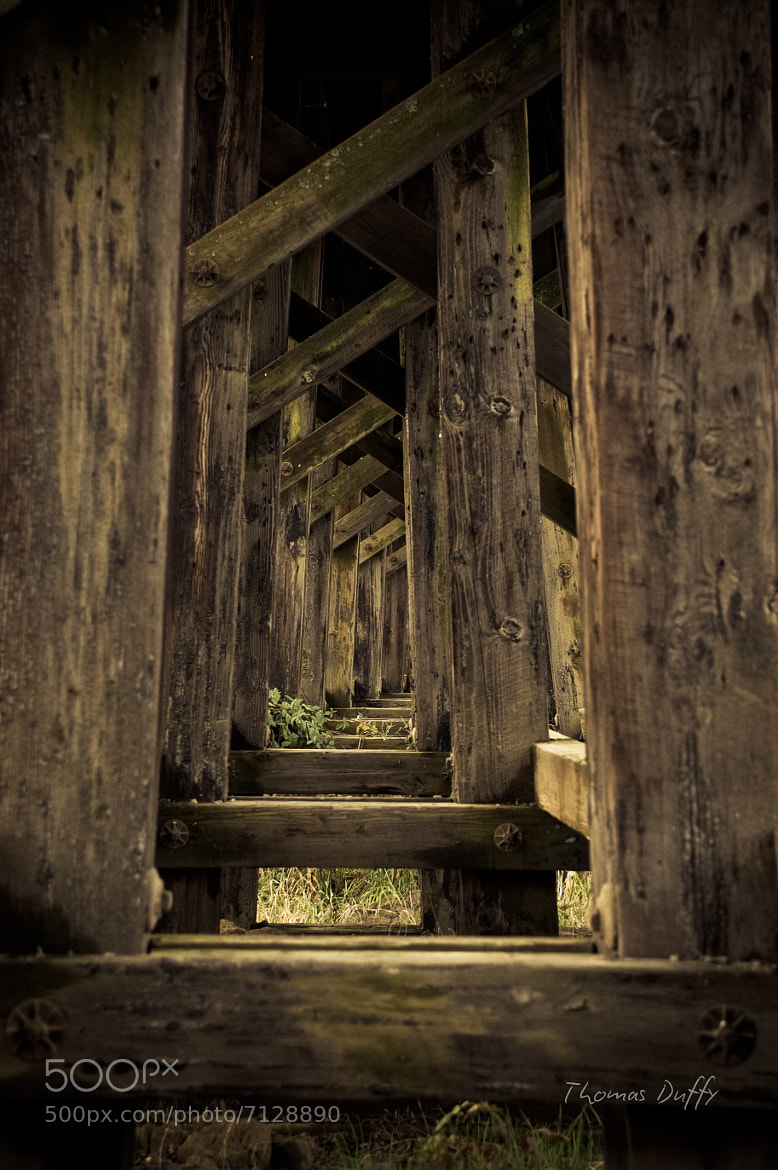 Photograph Wooden Trestle by Thomas Duffy on 500px