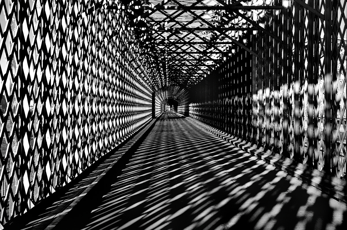 Photograph Bridge on the morning B&W by Mirek  . on 500px