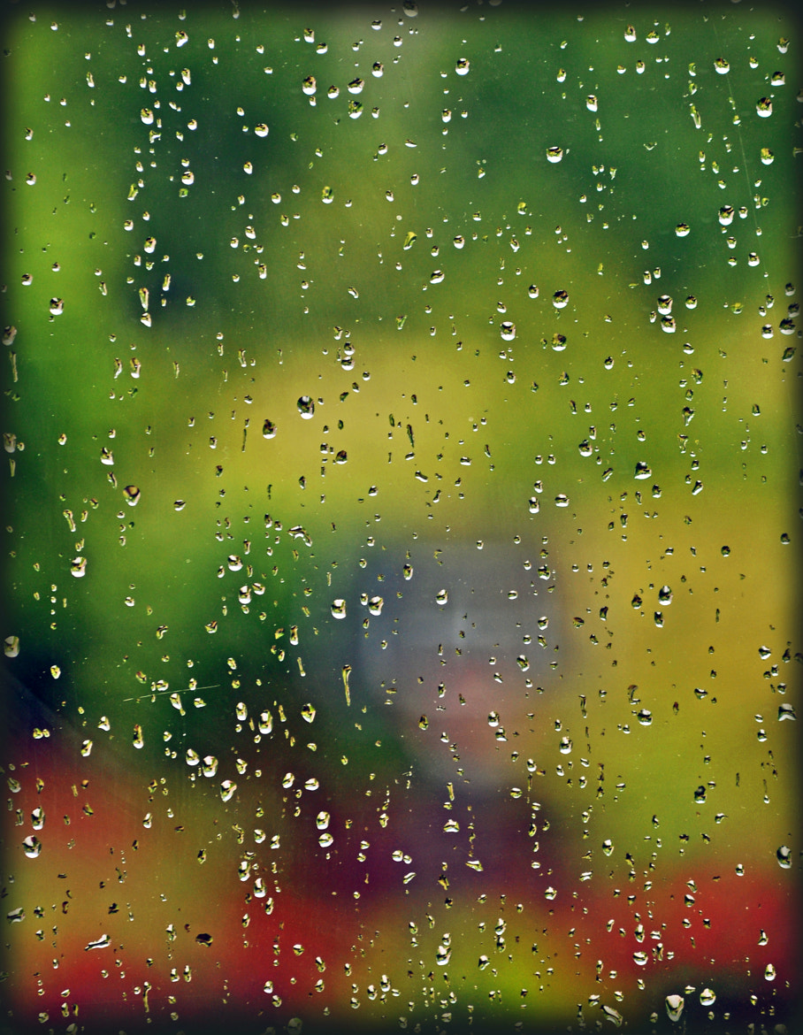 Photograph Rainy Day from my Office Window by Mark Luftig on 500px